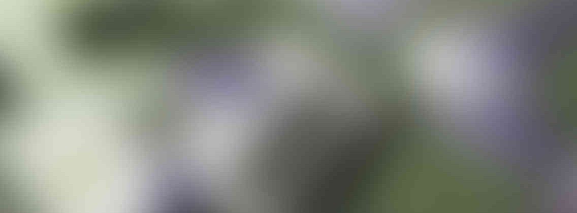 http://senhorafaztudo.com.br/wp-content/uploads/2013/03/relay_slide_3_v01-1136x420.jpg